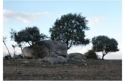 Anta - Arraiolos