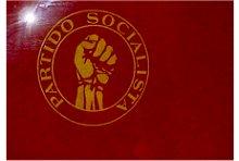 Bandeira do Partido Socialista
