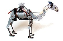Robot Camelo