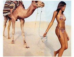 Colaboradora Deserto Camelo