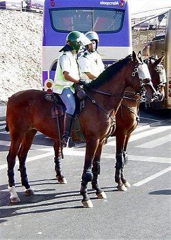 GNR Cavalo