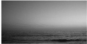Mar - Serrão