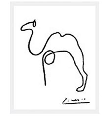 Picasso Camelo