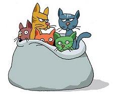 Saco de Gatos